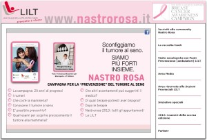 sito-web-2013
